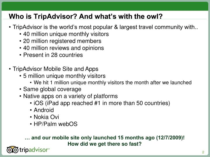 Who is TripAdvisor? And what's with the owl?