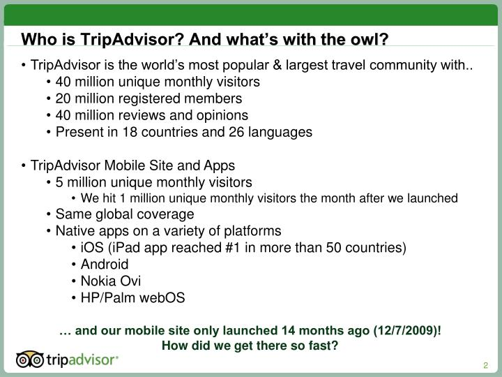 Who is tripadvisor and what s with the owl
