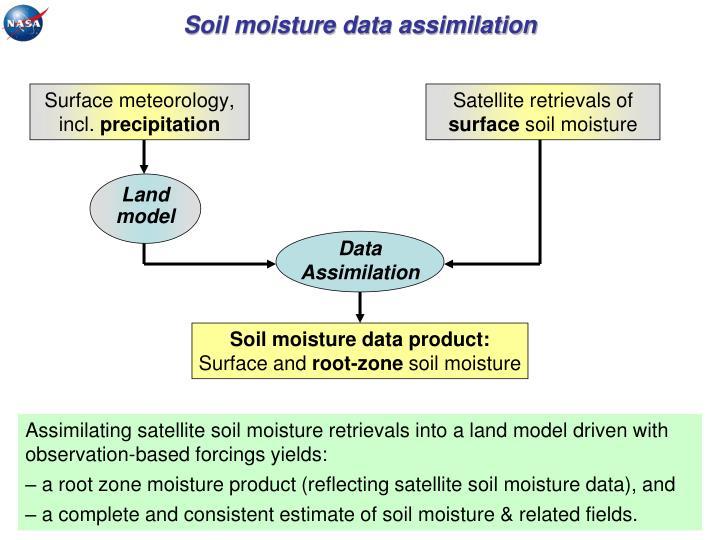 Soil moisture data assimilation
