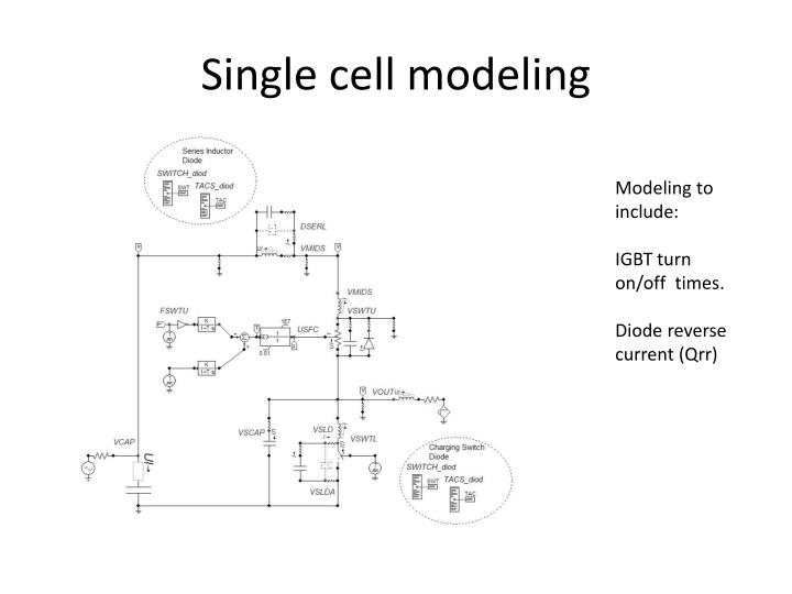 Single cell modeling