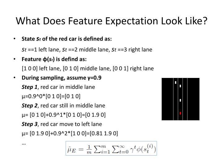 What Does Feature Expectation Look Like?