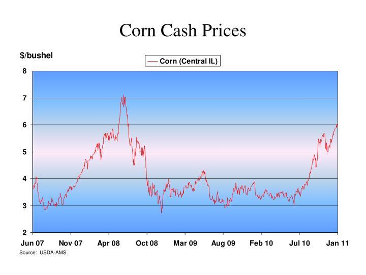 Corn Cash Prices