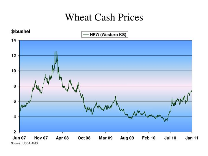 Wheat Cash Prices