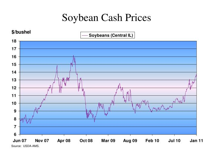 Soybean Cash Prices