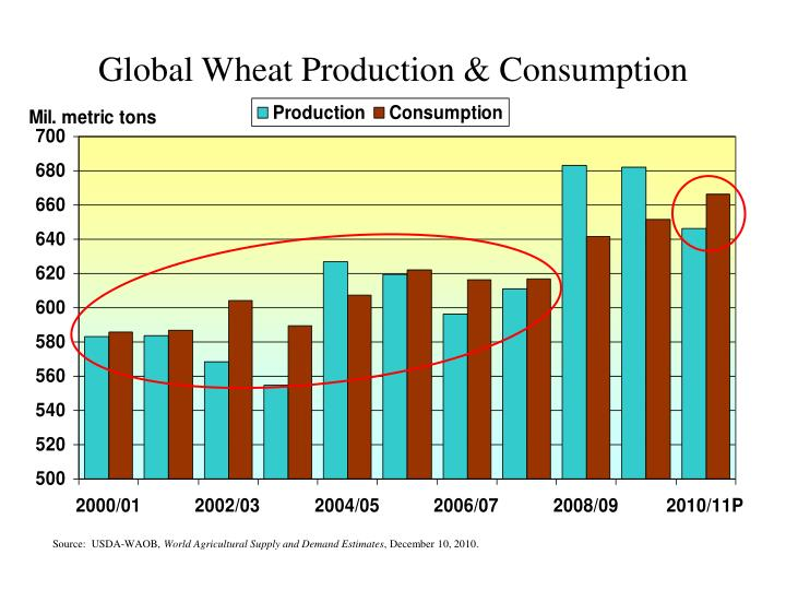 Global Wheat Production & Consumption