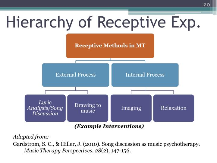 Hierarchy of Receptive Exp.