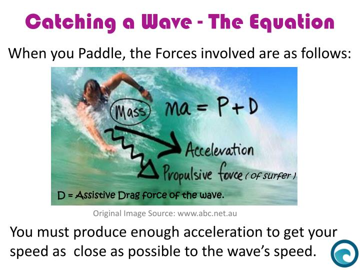 When you Paddle, the Forces involved are as follows:
