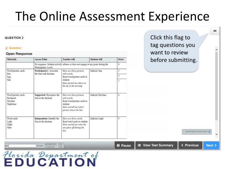 The Online Assessment Experience