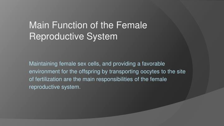 Main Function of the Female Reproductive System