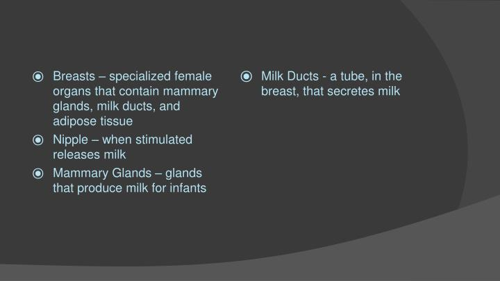 Breasts – specialized female organs that contain mammary glands, milk ducts, and adipose tissue