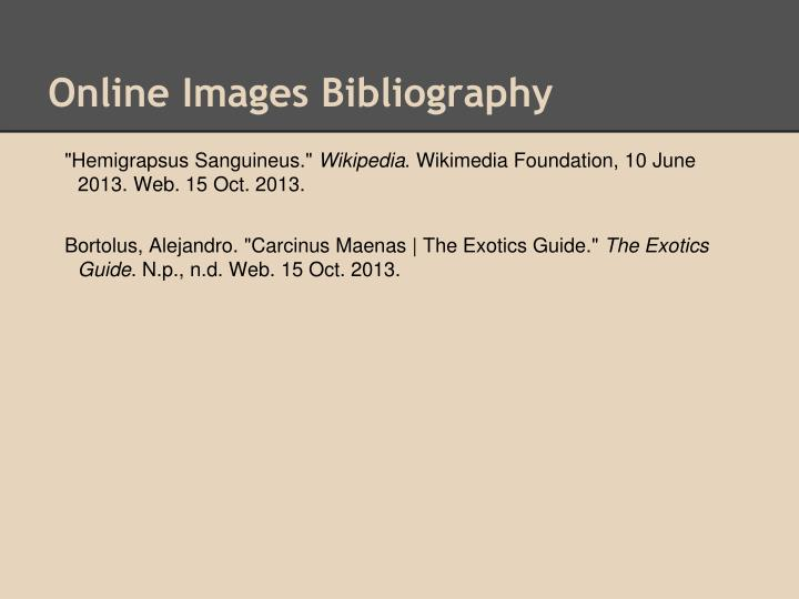 Online Images Bibliography