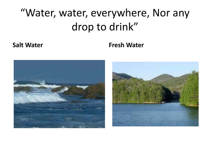 """Water, water, everywhere, Nor any drop to drink"""