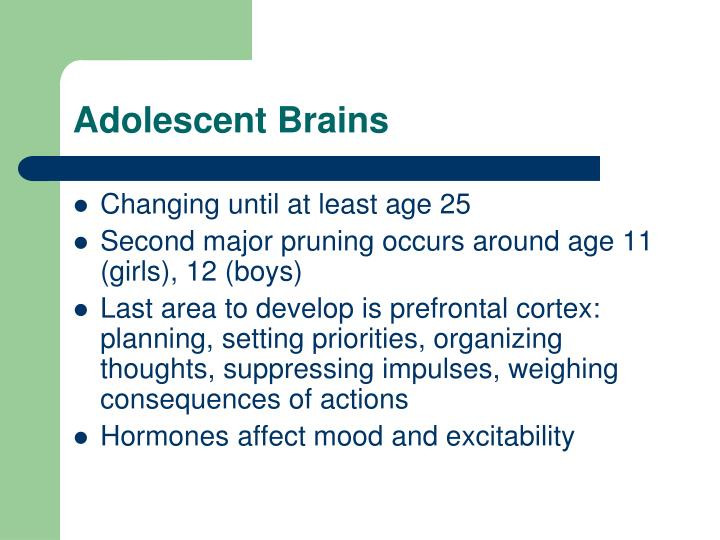 Adolescent Brains