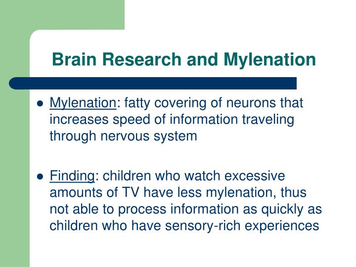 Brain Research and Mylenation