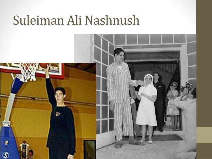 Suleiman Ali Nashnush