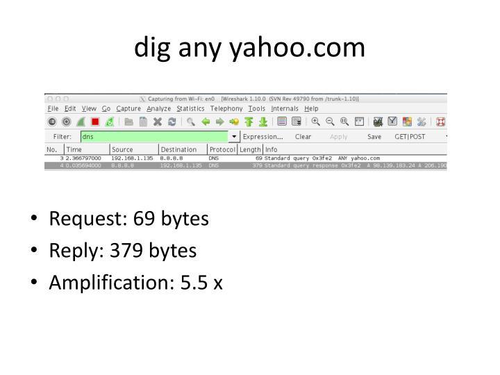 dig any yahoo.com