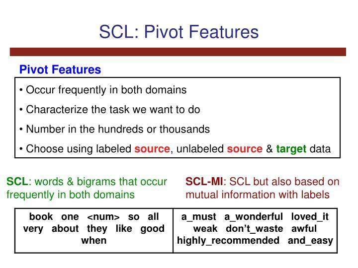 SCL: Pivot Features