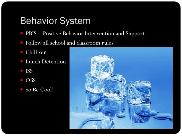 Behavior System