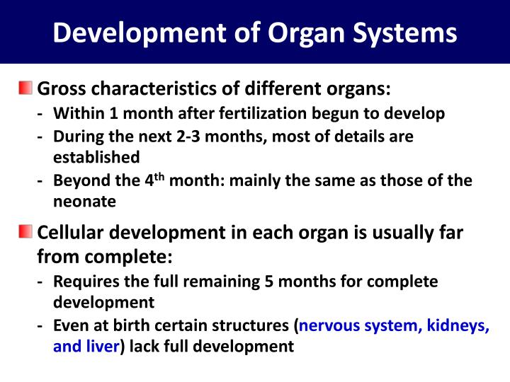 Development of Organ Systems