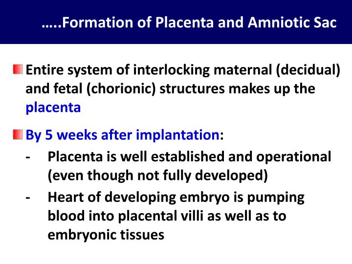 …..Formation of Placenta and Amniotic Sac