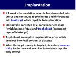 implantation