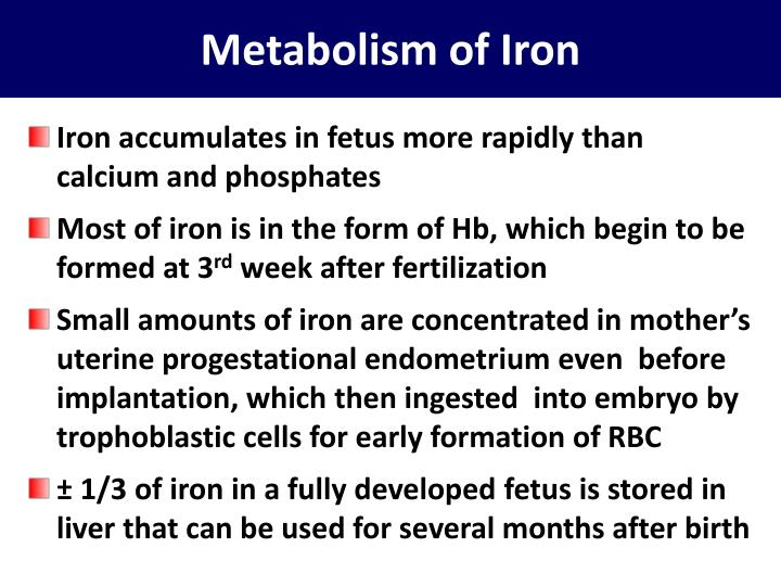 Metabolism of Iron