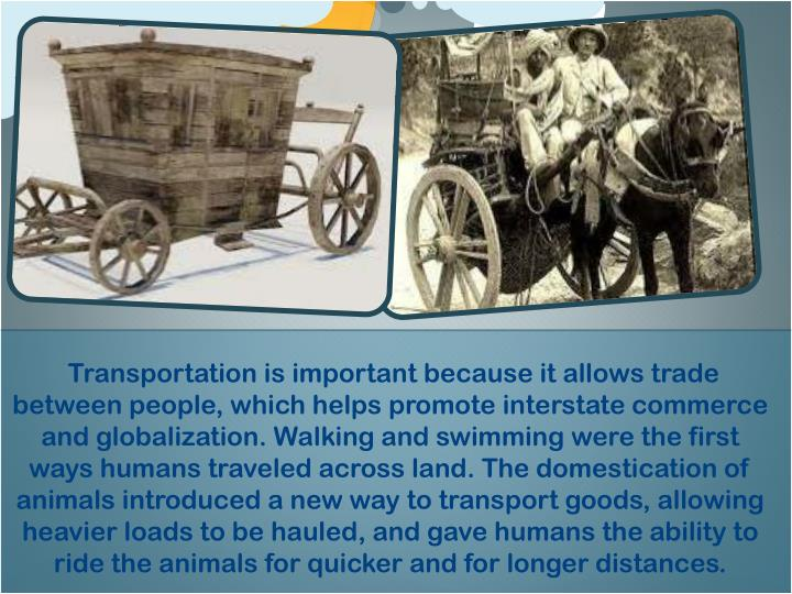 Transportation is important because it allows trade between people, which helps promote interstate commerce and globalization. Walking and swimming were the first ways humans traveled across land. The domestication of animals introduced a new way to transport goods, allowing heavier loads to be hauled, and gave humans the ability to ride the animals for quicker and for longer distances.