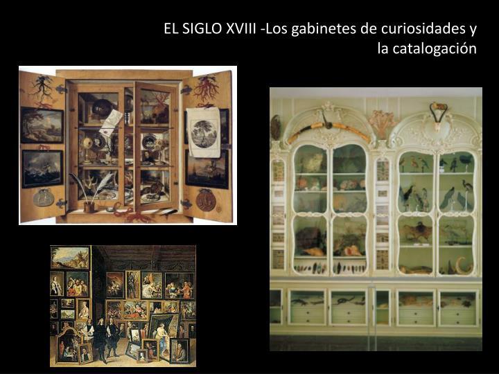 EL SIGLO XVIII -Los gabinetes de curiosidades y