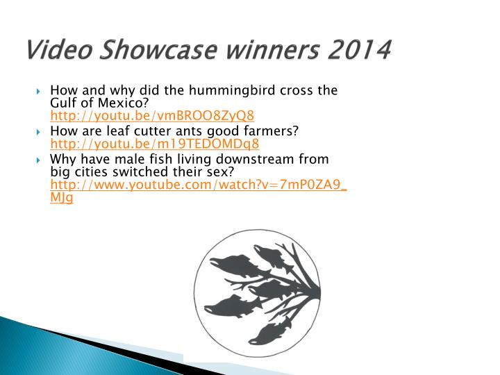 Video Showcase winners 2014