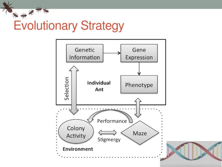 Evolutionary Strategy