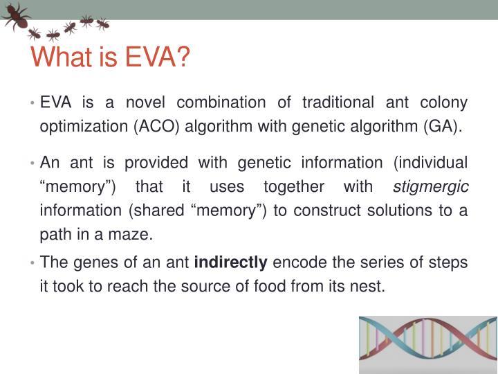 What is EVA?