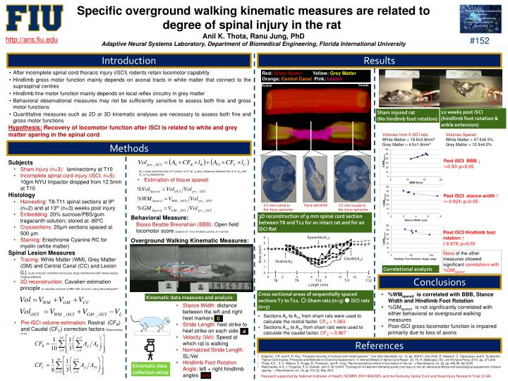 Specific overground walking kinematic measures are related to degree of spinal injury in the rat