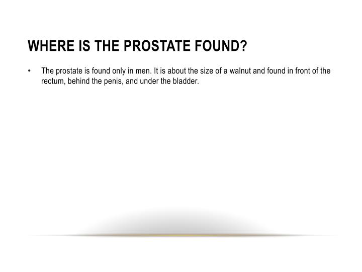 WHERE IS THE PROSTATE FOUND?