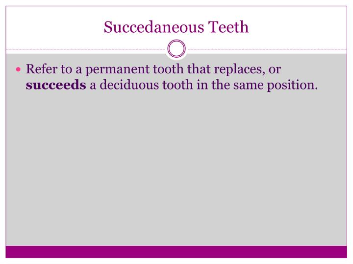 Succedaneous teeth