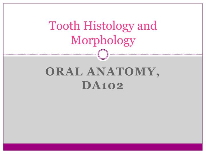 Tooth histology and morphology
