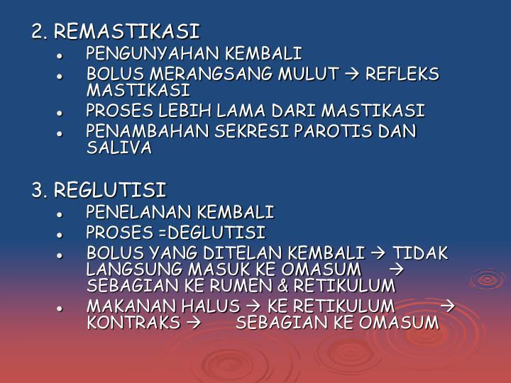 2. REMASTIKASI
