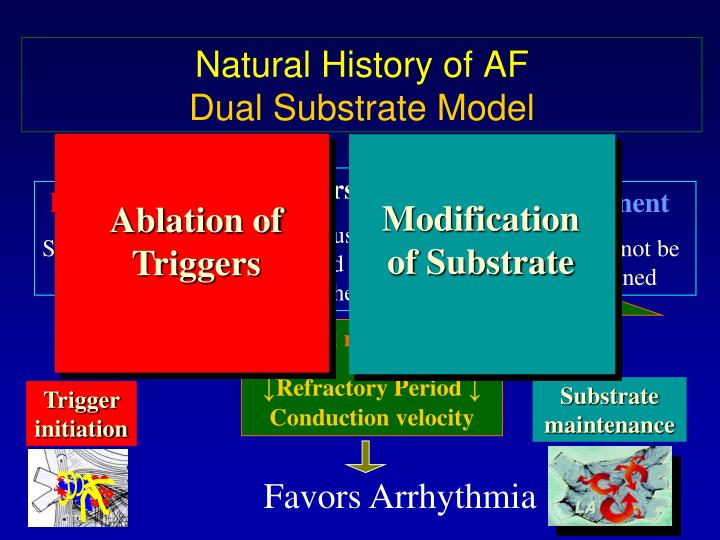 Ablation of Triggers