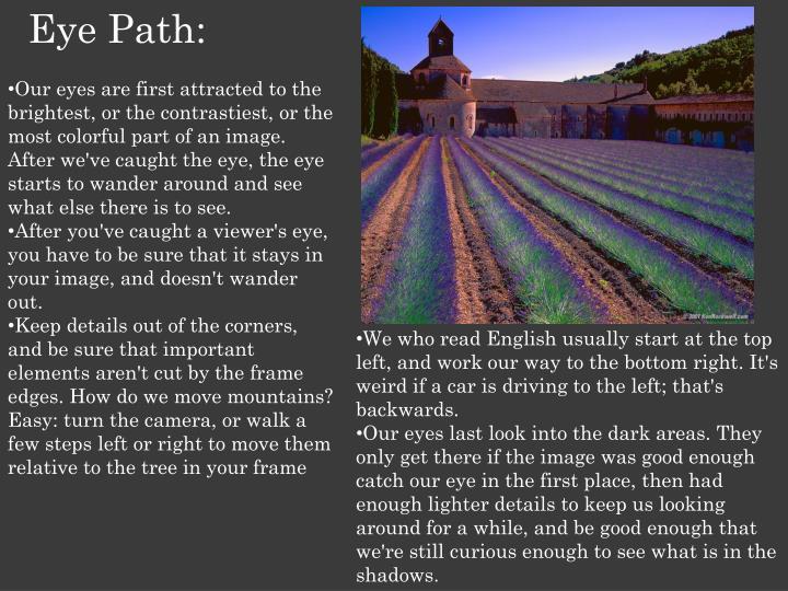 Eye Path: