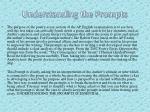 understanding the prompts
