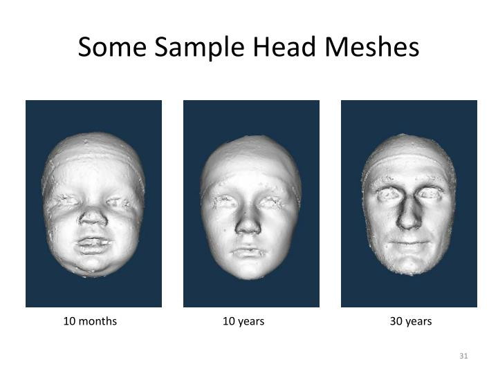 Some Sample Head Meshes