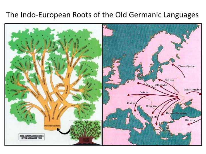 The Indo-European Roots of the Old Germanic Languages
