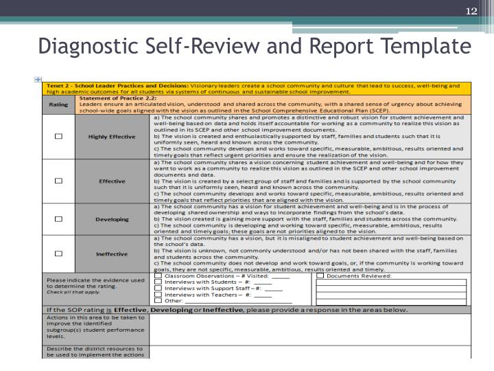Diagnostic Self-Review and Report Template
