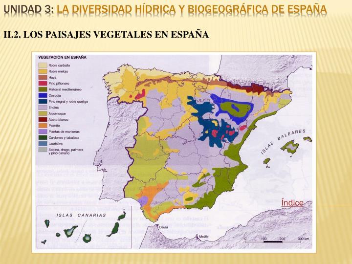II.2. Los paisajes vegetales en España