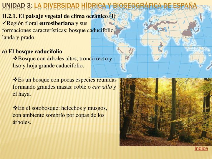 II.2.1. El paisaje vegetal de clima oceánico (I)