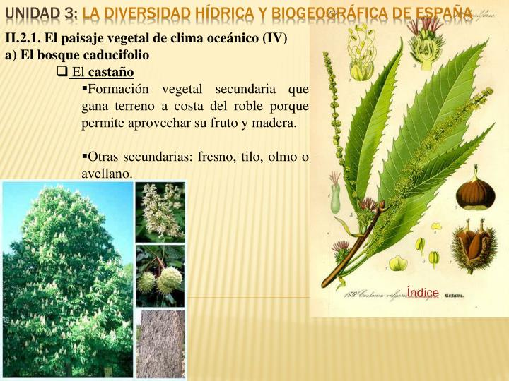 II.2.1. El paisaje vegetal de clima oceánico (IV)