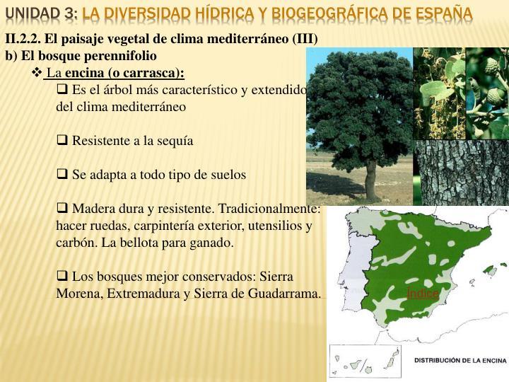 II.2.2. El paisaje vegetal de clima mediterráneo (III)