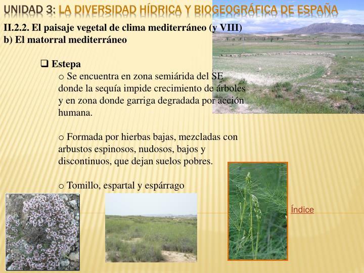 II.2.2. El paisaje vegetal de clima mediterráneo (y VIII)