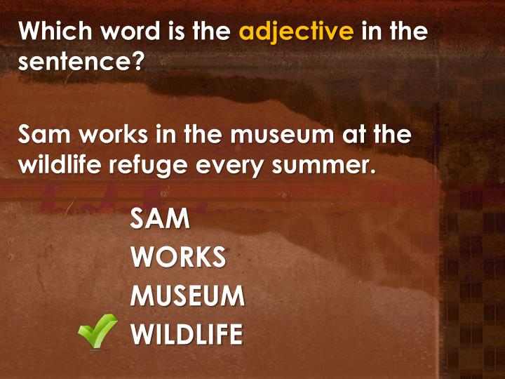 Which word is the