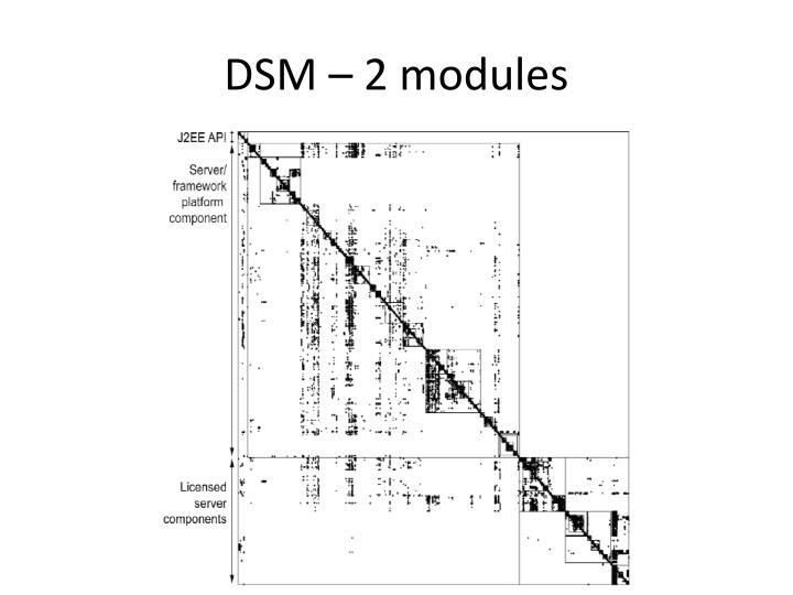 DSM – 2 modules