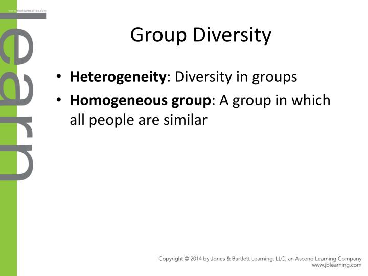 Group Diversity